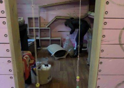 Des chambres et des jouets nettoyés chaque jour